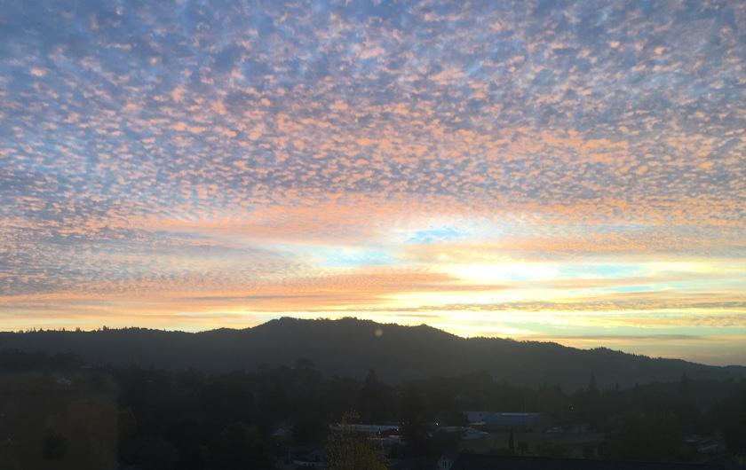 sunrise cloverdale